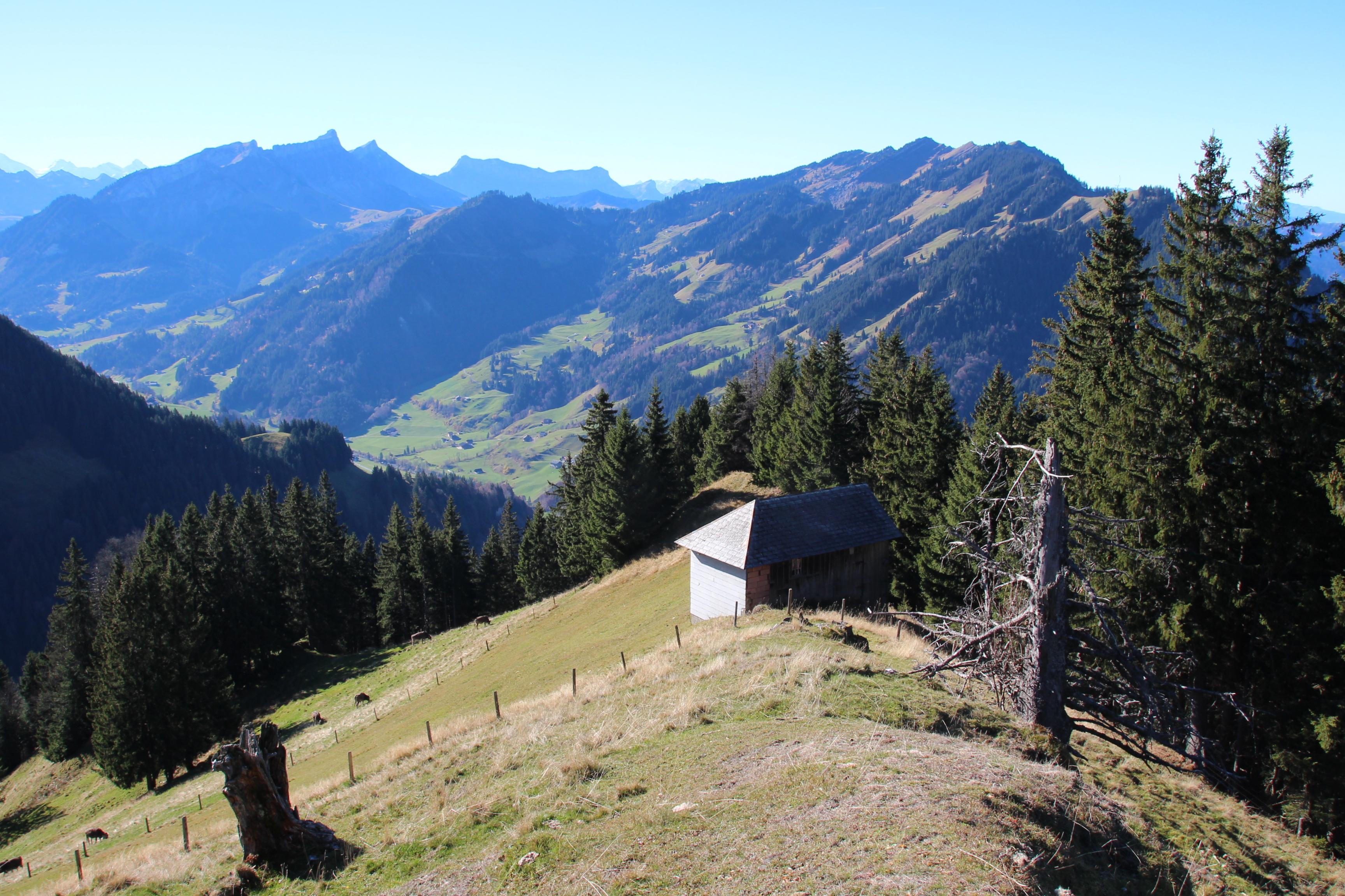 Seilbahn Chlusen-Farneren, Bergstation Schüpfheim